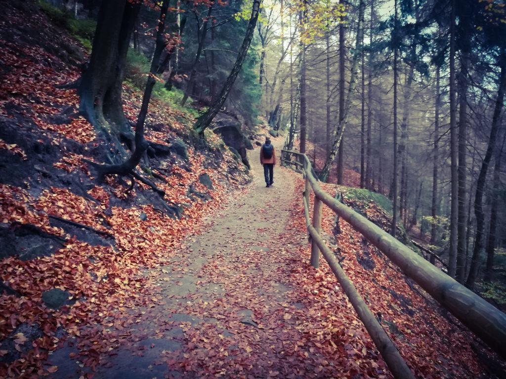 Чешская Швейцария пешком