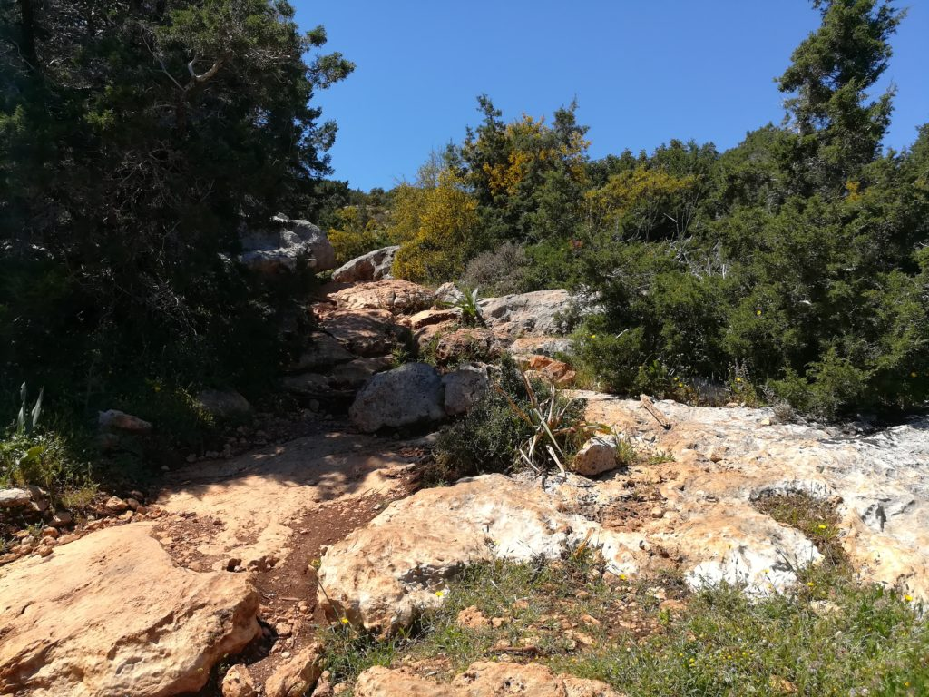 Тропа Афродиты, Акамас, Кипр