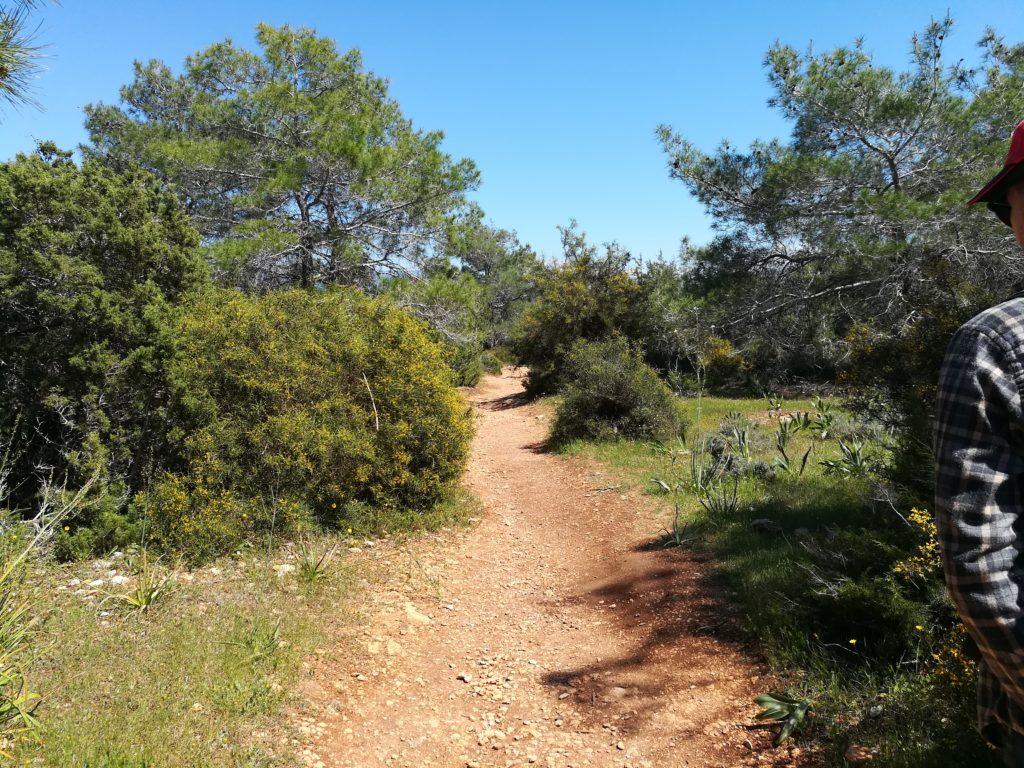 Тропа Афродиты, Полис, Кипр