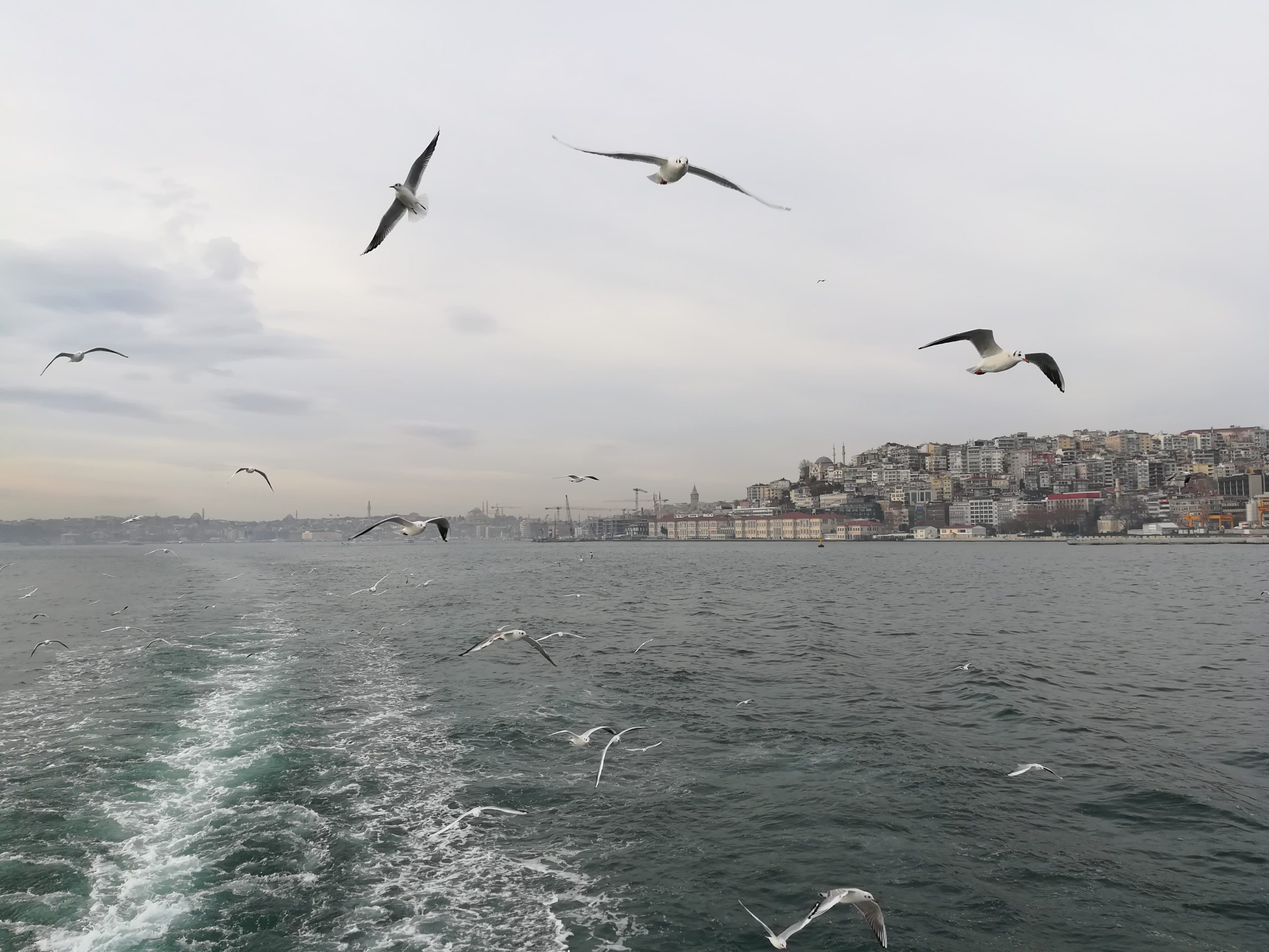 Круиз по Босфору, Стамбул, Турция