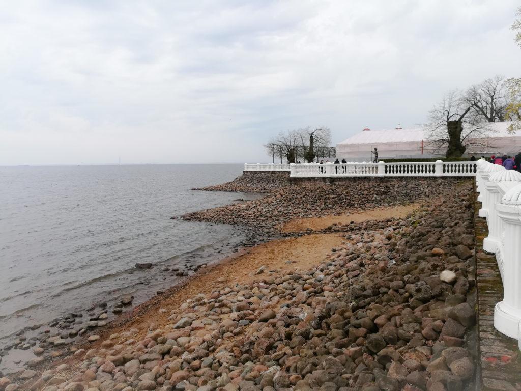 петергоф финский залив