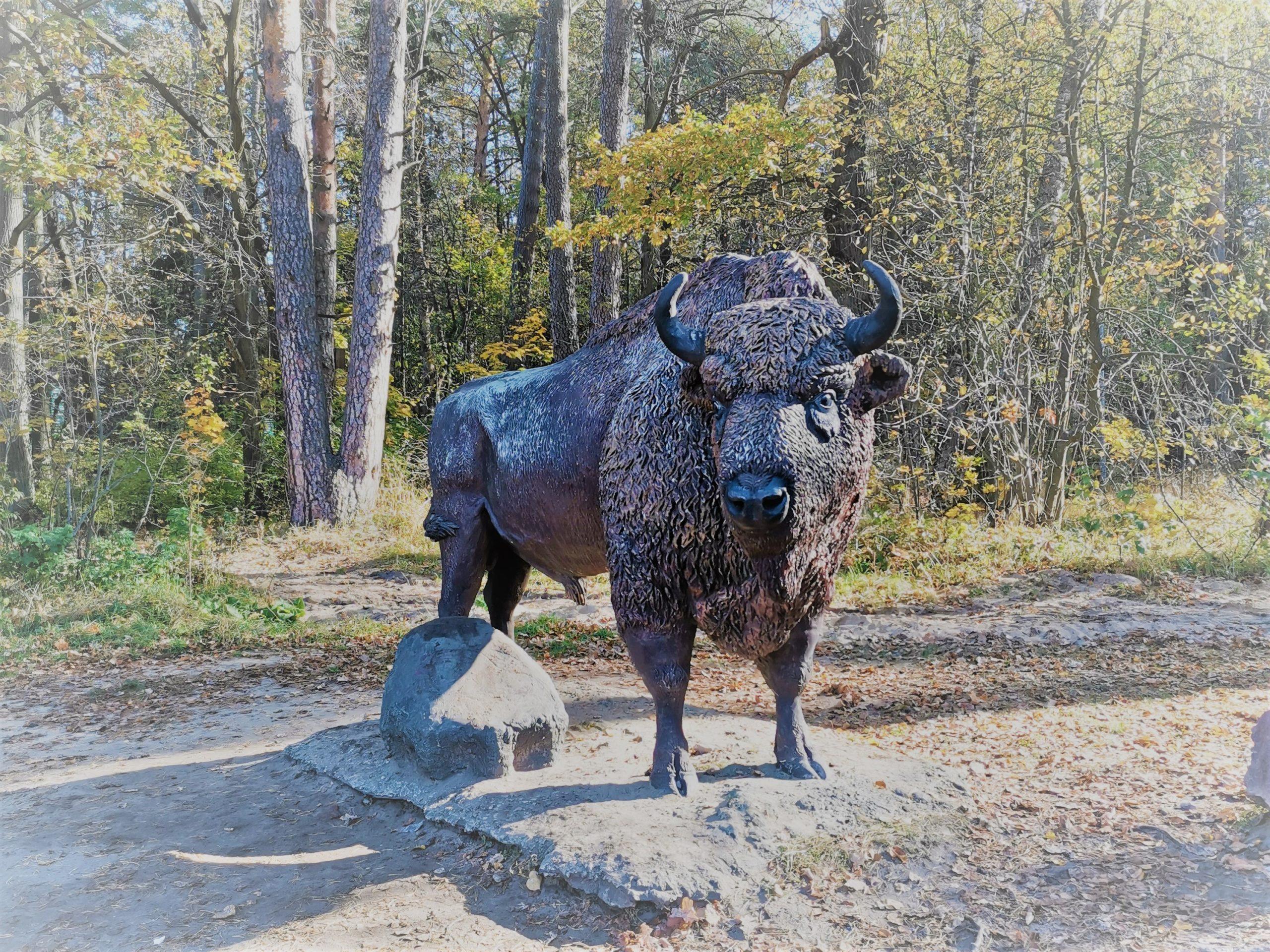 Приокско-Террасный заповедник зубр